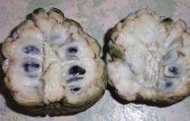 Annona squamosa - Fruit cross-section - Click to enlarge!